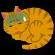 猫インフルエンザの症状とは?感染経路・予防法・治療法は?